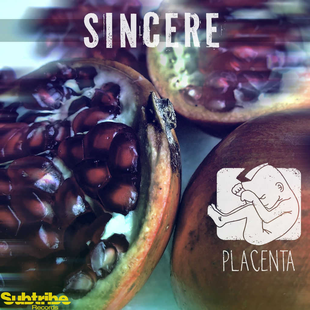 Placenta, Insight Effect