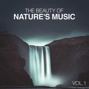 Nature's Sonic Environments and Sounds