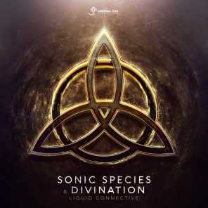 Sonic Species and Divination