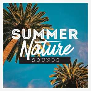 Sounds of Nature Relaxation, Nature Sounds Artists, Nature Sound Series