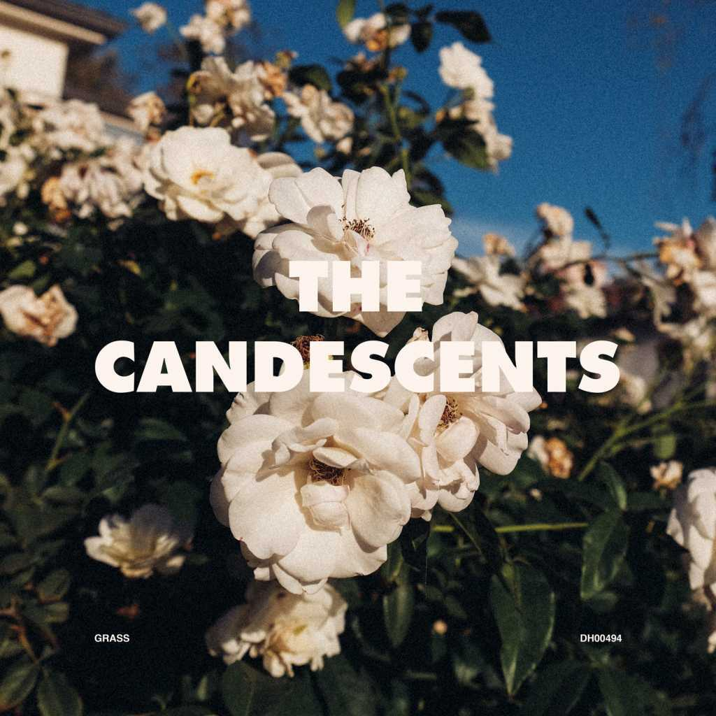 The Candescents