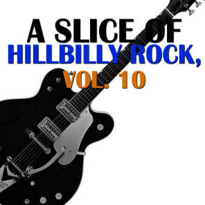 A Slice of Hillbilly Rock, Vol. 10