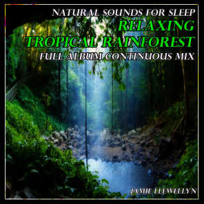 Jamie Llewellyn - Natural Sounds for Sleep: Relaxing