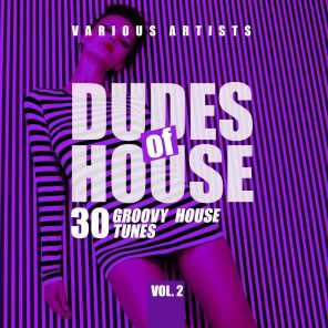 Dudes of House (30 Groovy House Tunes), Vol. 2