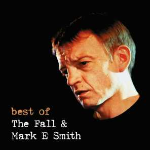 Best of the Fall & Mark E Smith Live