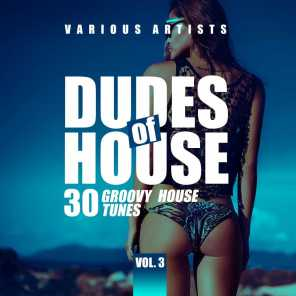 Dudes of House (30 Groovy House Tunes), Vol. 3