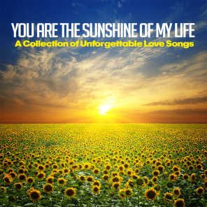You Are the Sunshine of My Life (A Collection of Unforgettable Love Songs)