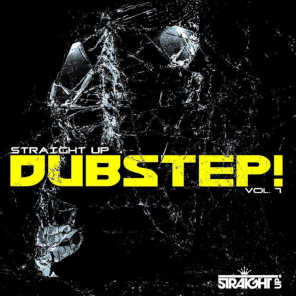 Straight Up Dubstep! Vol. 7