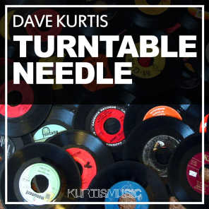Turntable Needle