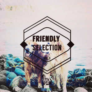 Friendly Selection, Vol. 3