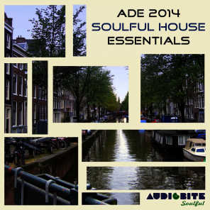 ADE 2014 Soulful House Essentials
