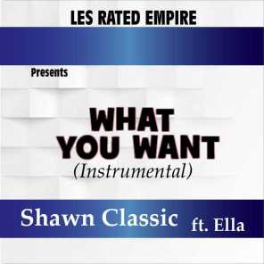 What You Want (feat. Ella) [Instrumental]