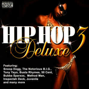 Hip Hop Deluxe Vol. 3 (Pure Hip Hop)