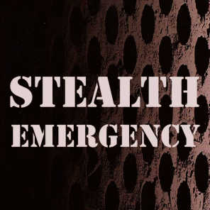 Stealth Emergency (The Best House of Another Dimension)