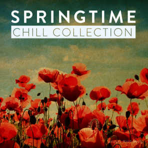 Springtime Chill Collection