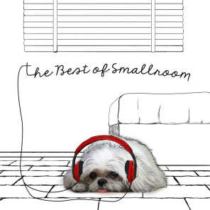The Best of Smallroom