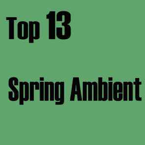 Top 13 Spring Ambient
