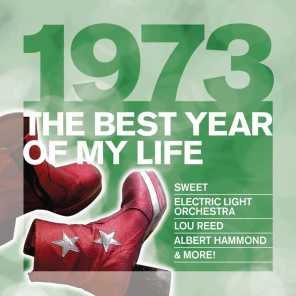The Best Year Of My Life: 1973