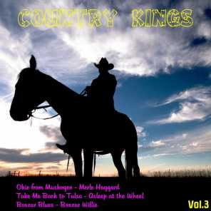 Country Kings, Vol. 3