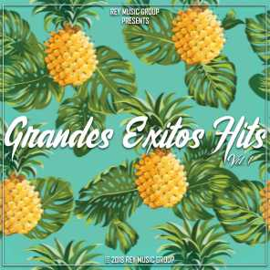 Grandes Exitos Hits, Vol. 1