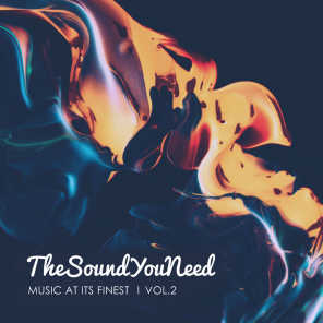 TheSoundYouNeed, Vol. 2