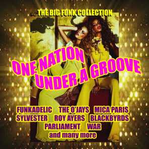 One Nation Under A Groove - (The Big Funk Collection)