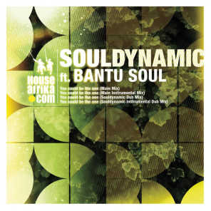 You Could Be the One (feat. Bantu Soul)