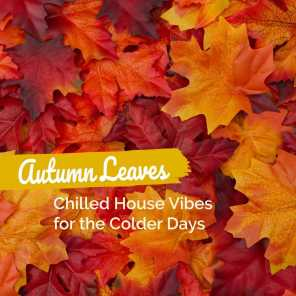 Autumn Leaves: Chilled House Vibes for the Colder Days