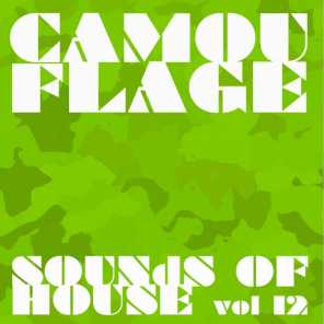 Camouflage Sounds of House, Vol.12
