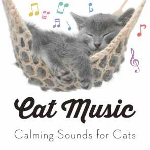 relaxmycat relaxing music for cats