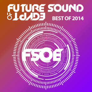 Future Sound of Egypt - Best of 2014