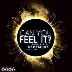 Can You Feel It?, Vol. 5 - Compiled By Baramuda