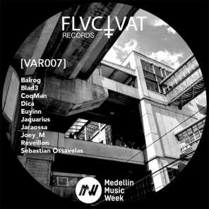 V.A. Fluctuat Records (MMW Edition)