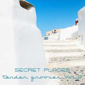 Secret Places, Tender Grooves, Vol.2