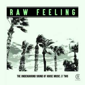 Raw Feeling - The Underground Sound of House Music, Vol. 2