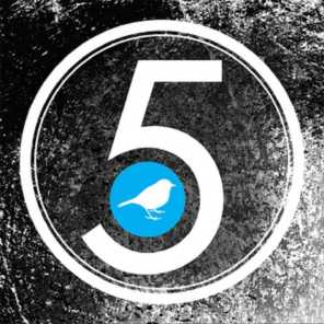 5: A February Records Anniversary Compilation