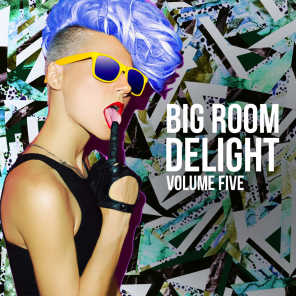 Big Room Delight, Vol. 5