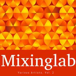Mixinglab Various Artists, Vol. 2