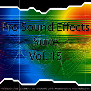 Pro Sound Effects Suite - Body Fall, Brush, Double, Moves