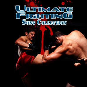 Ultimate Fighting Song Collection