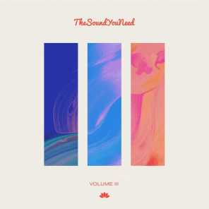 TheSoundYouNeed, Vol. 3