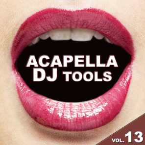 Acapella DJ Tools, Vol. 13